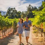 Napa Valley Featured Image